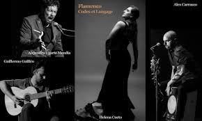 Conférence flamenco talence